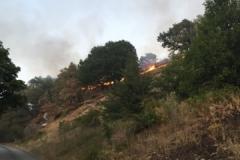 Incendio-Localita-FIeste-26.08.2017-1