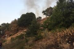 Incendio-Localita-FIeste-26.08.2017-10