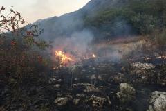 Incendio-Localita-FIeste-26.08.2017-2
