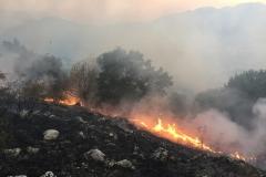Incendio-Localita-FIeste-26.08.2017-3