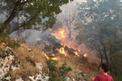 Incendio-Localita-FIeste-26.08.2017-6