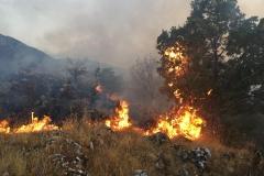 Incendio-Localita-FIeste-26.08.2017-7