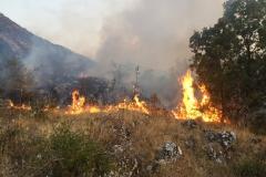 Incendio-Localita-FIeste-26.08.2017-8