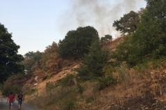 Incendio-Localita-FIeste-26.08.2017-9