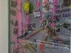 bagnoli-irpino-rosa-per-il-giro-d-italia00018