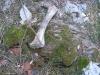 Bagnoli-Irpino-Monnezzaro-Caliendo-7