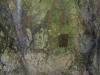 Laceno-Eremo-San-Guglielmo-22