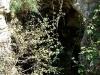 Laceno-Eremo-San-Guglielmo-24