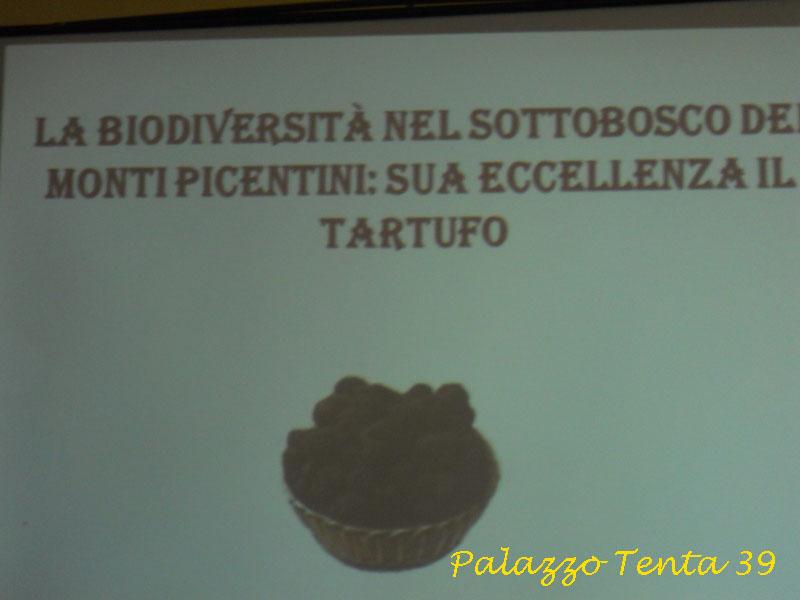 Conferenza sul Tartufo 4