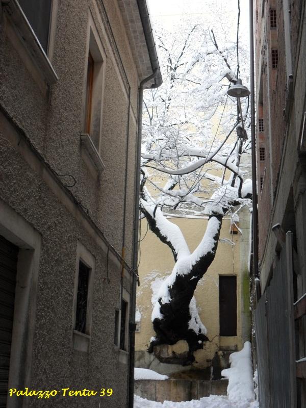 Bagnoli-Irpino-Nevicata-Febbr2012-GTammaro-9