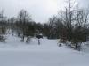 lago-laceno-nevicata-11-febbraio-2012i00001