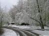 lago-laceno-neve-pasquetta-201200001