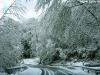 lago-laceno-neve-pasquetta-201200003