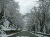 monte-terminio-neve-pasquetta-201200001