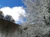 monte-terminio-neve-pasquetta-201200008