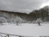 monte-terminio-neve-pasquetta-201200010