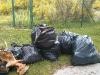 Laceno-giornata-ecologica-2014-Gruppo-Giovani-4