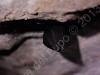 Grotta-Caliendo-2013-10