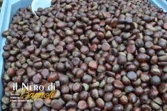 Il-Nero-Bagnoli-2016-14