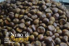 Il-Nero-Bagnoli-2016-16