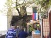 La Sagra 2010 27