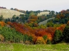 Laceno-autunno-2008-2009-1