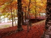Laceno-autunno-2008-2009-10