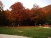 Laceno-autunno-2008-2009-12