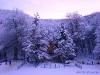 Laceno-inverno-2008-2009-10