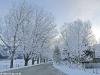 lago-laceno-record-di-freddo-13-dicembre-201200010