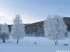 lago-laceno-record-di-freddo-13-dicembre-201200028