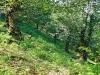 Sulle-orme-di-Giustino-Forunato-2012-13