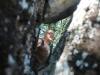 Sulle-orme-di-Giustino-Forunato-2012-21