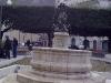 Pasqua 2010 14 03042010103