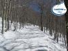 pista-sci-di-fondo-lago-laceno-monte-raiamagra00025