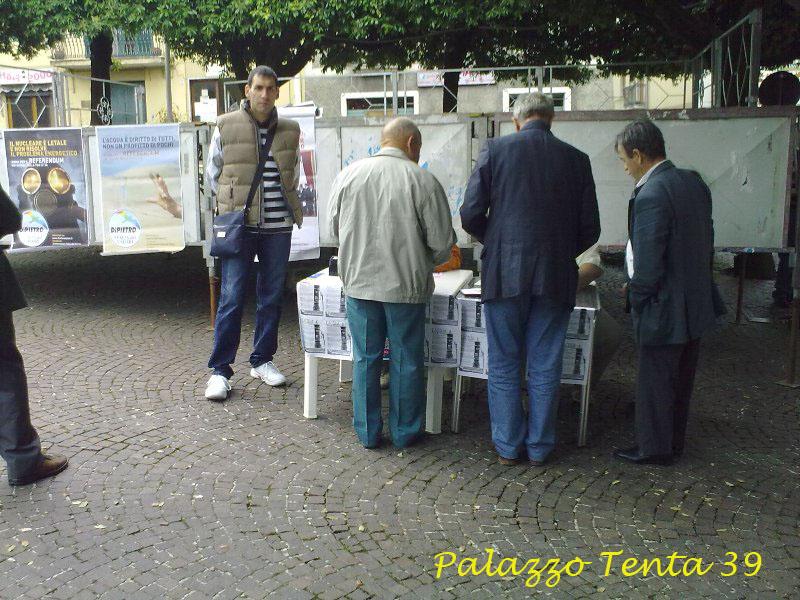 Sagra pecorino e scorzone 2010 16