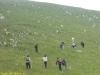 Escursione-Monte-Calvello-Laceno-2014-20
