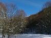 monte-cervialto-2012-lago-laceno-innevatoi00009