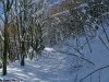 monte-cervialto-2012-lago-laceno-innevatoi00027