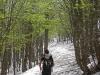 sci-alpinismo-lago-laceno-1-maggio-201300013