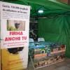 Bagnoli, l'Associazione Tartufai raccoglie le firme per l'abbattimento dei cinghiali