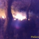 Bagnoli, incendio domato in località Fieste