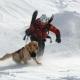 Sicurezza sulla neve, Cai e Cnsas organizzano il corso al Laceno