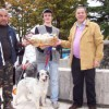 12° Concorso Amatoriale per Cani da Tartufo