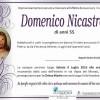 Domenico Nicastro
