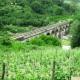 'Dal treno alla bici'. Addio alla linea ferroviaria Avellino-Rocchetta