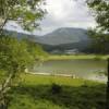 Bagnoli, l'Amministrazione punta sulla tutela ambientale