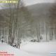 Sulla vetta del Laceno un metro e mezzo di neve. Strade percorribili