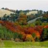 Luci e colori a Laceno ... tra magnifici e maestosi paesaggi