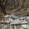 Laceno, lastre di amianto gettate nei boschi